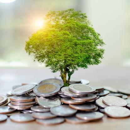 money-growth-saving-money_34998-244